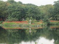 『木曽川水園の秋風景・・・・・』 - 自然風の自然風だより