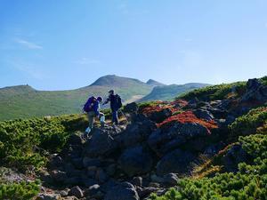 愛別岳の紅葉、9月22日-愛山渓温泉から愛別岳編- - デジカメ持って野に山に