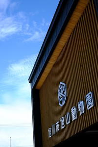 旭山動物園 - minamiazabu de 散歩 with FUJIFILM