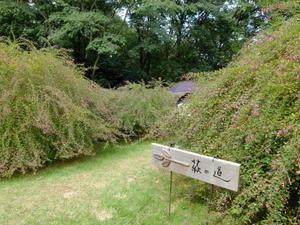 萩の道 @仙台市野草園 - ペンギンの足跡Ⅱ