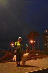 また雨ですか?! (^_^;) - 犬連れへんろ*二人と一匹のはなし*