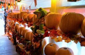 かぼちゃ届く - キャンプ・アンド・キャビンズ那須高原 カエルくんの日記