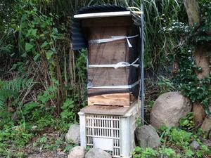 ミツバチたちは今 - 隼と備中鍬