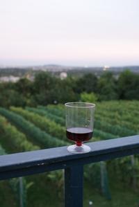 ワインのお祭り - パリデイズ