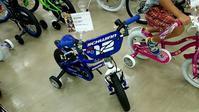 新商品発表会!「SCHWINN」の巻き - 大津の自転車販売・修理店 BEAR'S CYCLE ベアーズサイクル