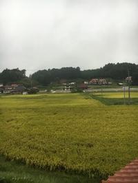帰省 - 京都西陣 小さな暮らし