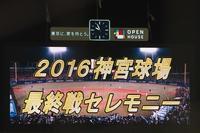 9/28神宮最終戦セレモニーフォト - Out of focus ~Baseballフォトブログ~