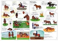 マカヒキクリアファイル - おがわじゅりの馬房