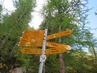 (前編)2日目のハイキングはRiffelalpからSunneggaまで。 - よく飲むオバチャン☆本日のメニュー