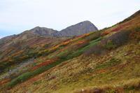紅葉の立山 '16 autumn -part 2- - つながる*noyama