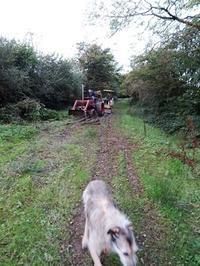 オンボロのトラクターを、近所のBen君が取りに来た日。 - イギリス 西ウェールズの田舎暮らし