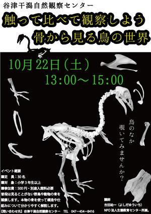★吉田くんの骨イベント@谷津干潟 - 葛西臨海公園・鳥類園Ⅱ