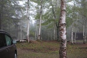 雨男のための雨キャンプ 2nd - ラフロイグブログ
