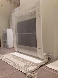 夏家電にさようなら。冬家電登場!我が家の除湿機の意外な活用法。 - *peppy days*