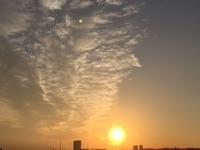 美しい夕陽 / お花の刺しゅう - y-hygge