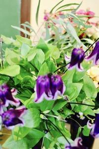今期も澄んだ秋晴れの中、始まりました♪ - Bouquets_ryoko