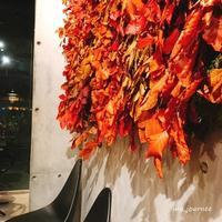 秋色キャロットケーキ@Nicolai Bergmann NOMU表参道♪ - **いろいろ日記**