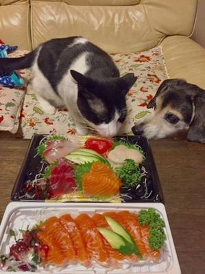オレちゃんの2年目記念日 - カンタとハンナ