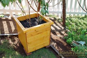 木製大型プランターの製作と苗の植栽。秋の日に、実動7時間も庭仕事!? - Martin Island ~空と森と水と~
