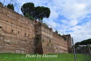 ローマの城壁博物館@ミモザ会♪ - ローマより愛をこめて