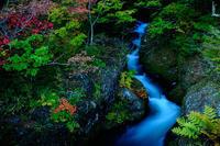 竜頭の滝の上流へ - 人生とは旅なり