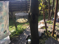 秋晴れ! 干し芋 と さつまいもの焼き菓子 - Coucou a table!      クク アターブル!