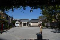 亀出神社へ散策 - kenのデジカメライフ