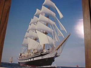 今年の帆船 - はなみずきによせて