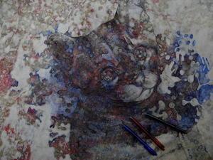 プリオシン海岸 - スズキヨシカズ幻燈画室