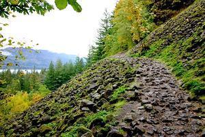 コロンビア川渓谷:滝巡りトレッキング - 緑の中を駆けていく