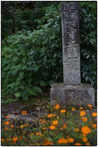 西山-2 - Hare's Photolog