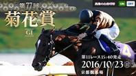 三冠レースの最後、菊花賞はサトノダイヤモンド - 【本音トーク】パート2(ご近所の旧跡めぐりなど)
