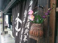 津和野へ - 花図鑑