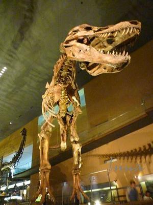 いのちたび博物館 恐竜がいっぱい - ひもろぎ逍遥