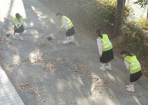 秋の木漏れ日が暖かく感じる月曜日の朝です - 平洲中NOW28