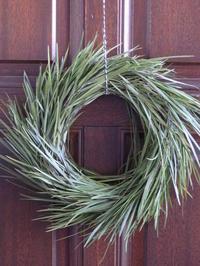 剪定枝のシンプルリース - 暮らしと植物のブログ