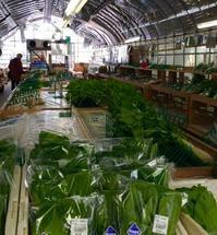 玄米ごはん、みかん、柿 - カキリマ・バリ島・アジア雑貨・エスニック衣料のネットショップ店主の日記