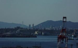 神戸港風景、トワイライト、孔雀草、ダリア、バラ - 風に吹かれて