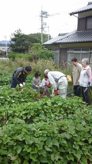 収穫に感謝 - 日本キリスト教団周陽教会