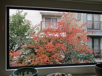 10月25日・・・秋のお菓子 - 喜茶ゆうご日記  ~すべては誰かのために…