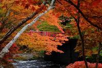 もみじ山(中野神社)2題 - へっぽこな・・