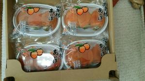 大国あんぽ柿 - HOSUMIの美しく楽しい毎日