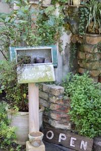 優しい時間(小さな隠れ家) - ゆきなそう  猫とガーデニングの日記