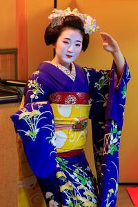 秋の宴(祇園東・雛菊さん、雛佑さん) - 花景色-K.W.C. PhotoBlog