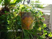 シャビー缶でフレンチアイビー&アロエちゃん - galette des Rois ~ガレット・デ・ロワ~