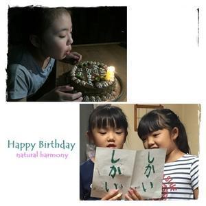11th HAPPY BIRTHDAY - natural harmony