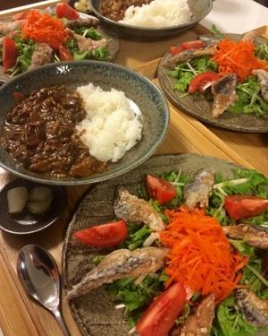 豚汁の和カレーと秋刀魚のから揚げのっけサラダで家飲みごはん・・・10/27 - vegechi