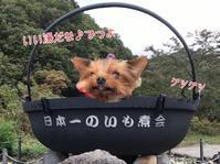続・山形芋煮会 - わんころ日誌