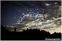 人と空 - 雲のごとく