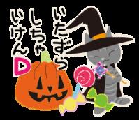 DDDなねこ - ぎんネコ☆はうす